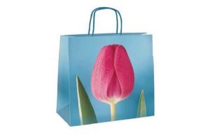 Blue Tulip 26x12x24 - 195 pz